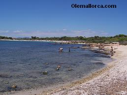 Ses Salines beaches
