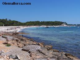 beaches Ses Salines