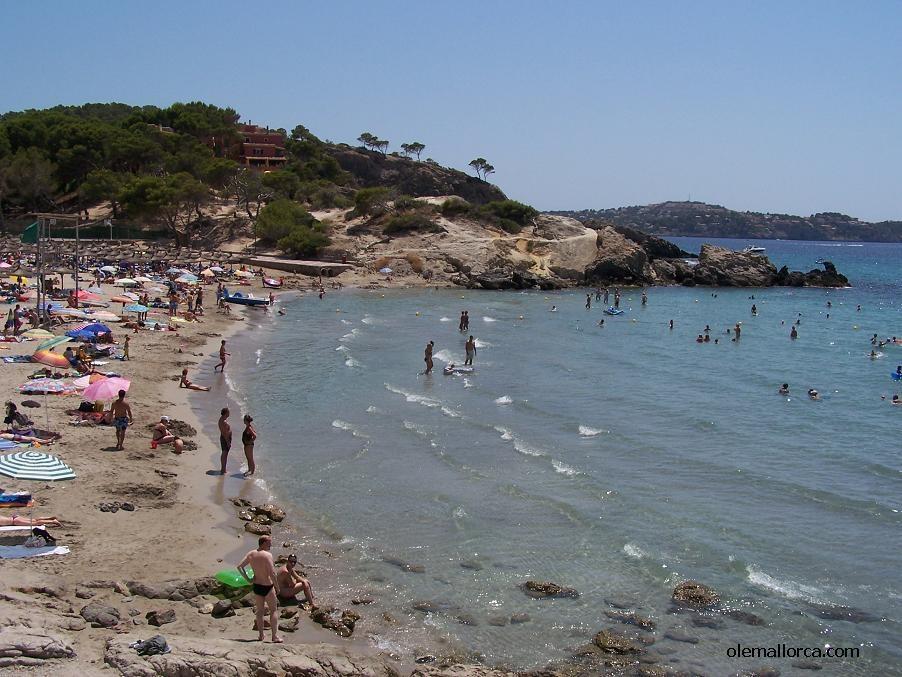 Fotos Playas De Paguera