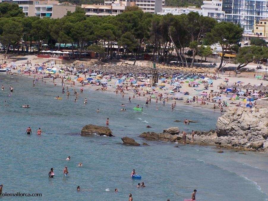Hotel Tora Mallorca Paguera