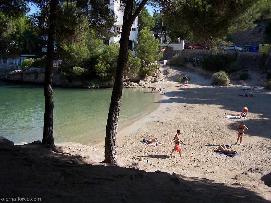Playa santa ponsa guia fotos de islas malgrats santa for Aparthotel d or jardin de playa santa ponsa